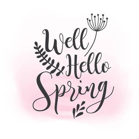 spring text polyvore