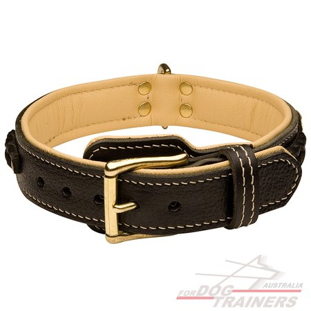 Leather brown dog collar with padding