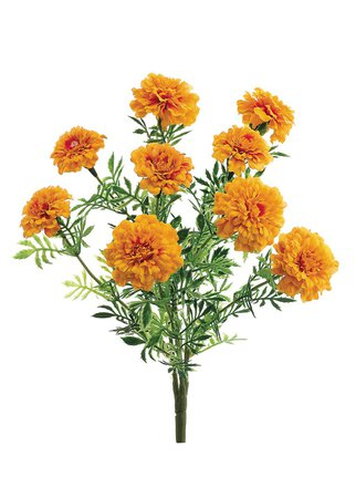 Orange Marigolds 1