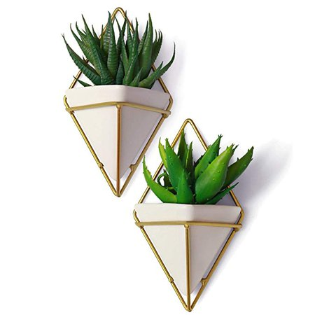 California Home Goods 2 Small Decorative Geometric Hanging Planters Pot for Indoor Wall Decor, Planter for Succulent Plants, Air Plant, Cacti, Faux/Artificial Plants, White Ceramic/Brass: Amazon.ca: Home & Kitchen