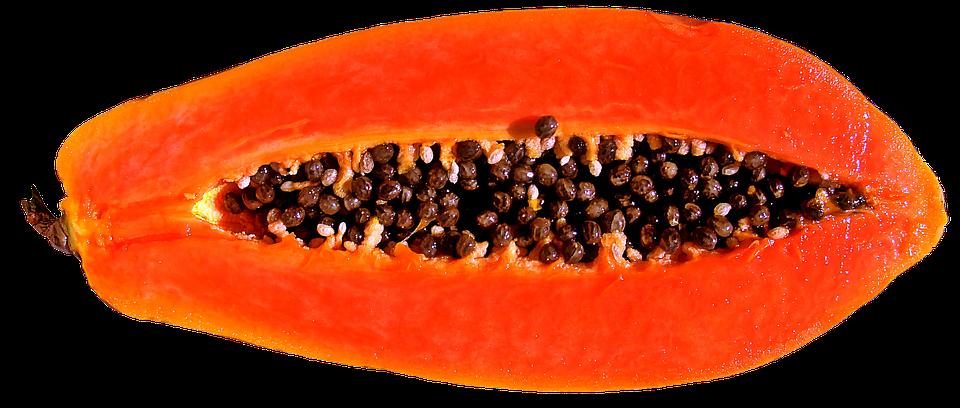 Fruit Papaya · Free image on Pixabay