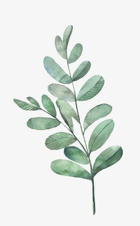 imgbin-watercolor-leaves-EAuVhb0BqJQnvbU7rpYn0QLBq.jpg (600×973)
