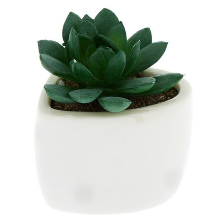 Faux Succulent Heart Plant - White | Icing US