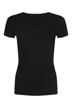 Basic Cotton V Neck T-Shirt | boohoo