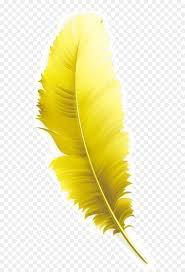 yellow feather – Google Søk