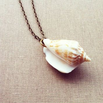 real seashell necklace - Google Search