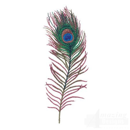 peacock feathers - Google Search