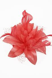 coral flower - Google Search