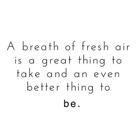Quote about air