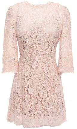 Flared Cotton-blend Corded Lace Mini Dress