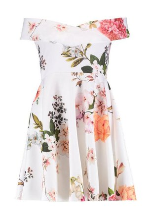 Floral Print Off Shoulder Skater Dress | Boohoo