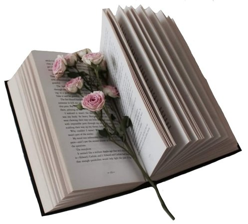 book png uploaded by alyssa on We Heart It