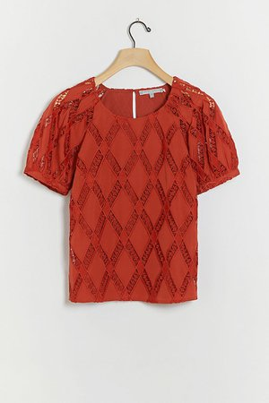 Anessa Lace Blouse | Anthropologie