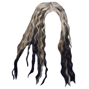 Blonde Hair Black Tip PNG