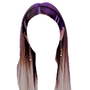 OMBRE HAIR BROWN AND BLONDE PNG HAIR CLIPS