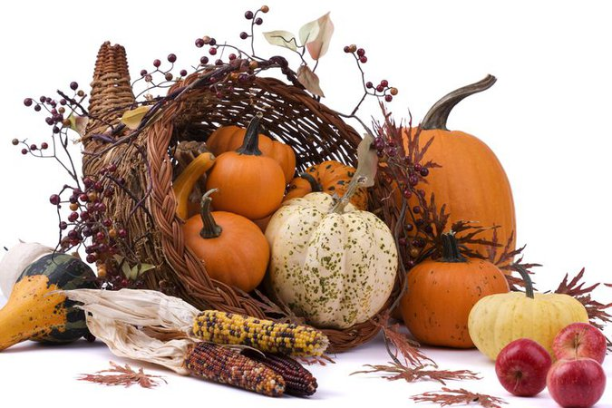 thanksgiving day images - Google Search