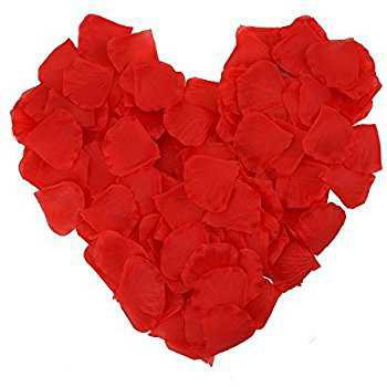 Amazon.com: eBoot 1000 Pieces Silk Rose Petals Wedding Party Flower Favors (Red): Home & Kitchen