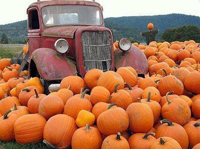 Vintage Truck In The Pumpkin Patch Pictures, Photos, and Images for Facebook, Tumblr, Pinterest, and Twitter