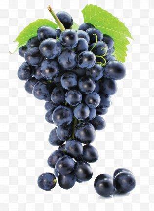 transparent grape vine png - Google Search