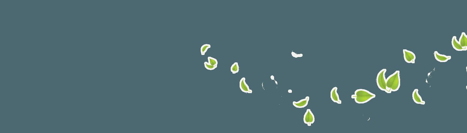 Green Leaves Transparent Background HQ PNG Image   FreePNGImg