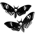 Curiology Pair of Deaths Head Moth Hair Clips Black – Angel Clothing