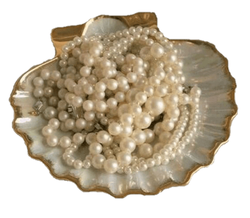 pearls shell