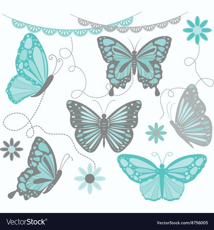 Aqua and grey butterfly collections Royalty Free Vector