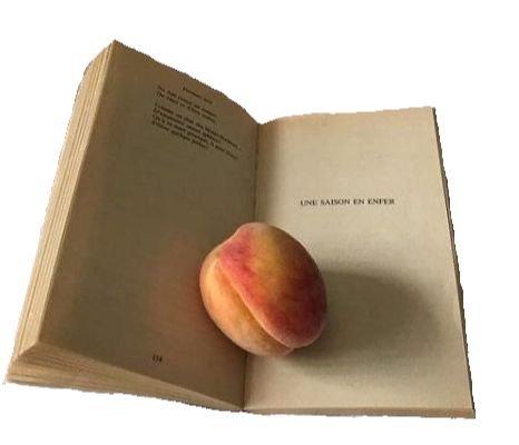 book & peach