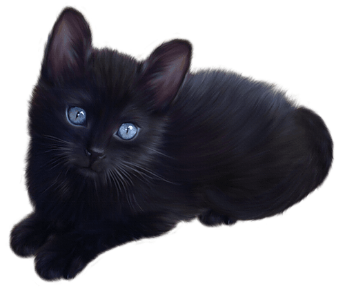 Little Black Cat Clipart | Gallery Yopriceville - High-Quality Images and Transparent PNG Free Clipart