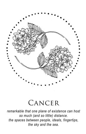 cancer tumblr - Google Search