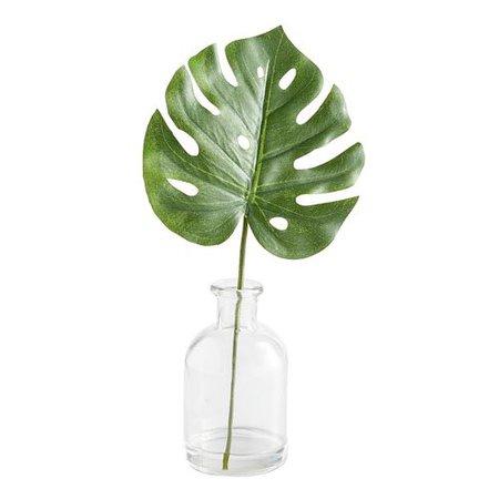 Mini Faux Monstera Leaf Arrangement in Glass Container   Pier 1