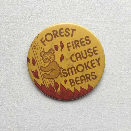 Vintage Forest Fires Cause Smokey Bears Pinback Button Pin