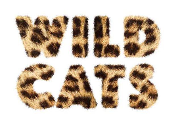 leopard words - Google Search