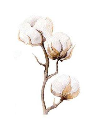 beige flower words - Google Search