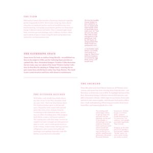 pink magazine text filler