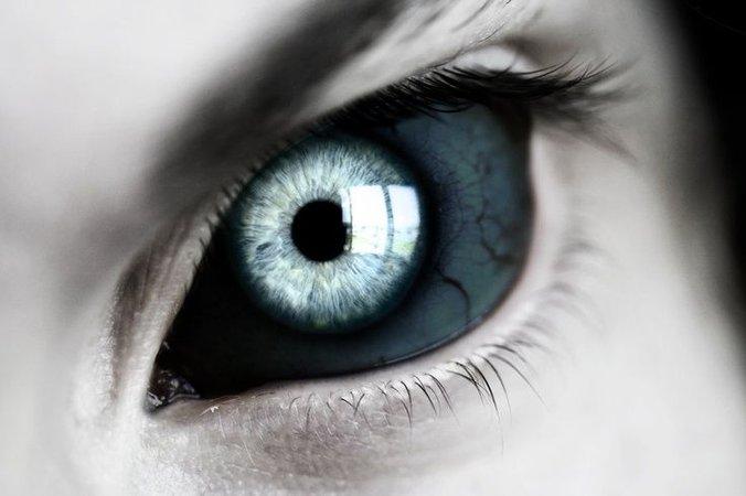 tribrid eyes