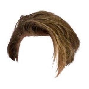 Brown Hair PNG