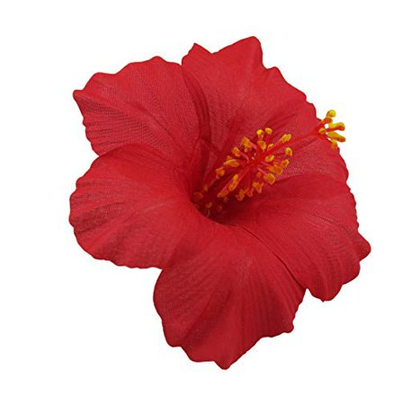 Amazon.com : Hawaiian Hibiscus Flower Hair Clip (Red) : Beauty