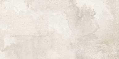 """Rainforest Porcelain Tile Series - 12"""" x 24"""" - Fog"""