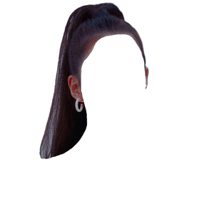 Black Ponytail Hair PNG