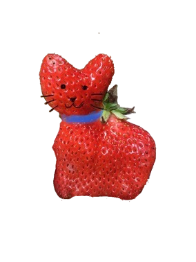 strawberry cat!!!