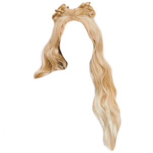 Blonde Hair Space Buns PNG