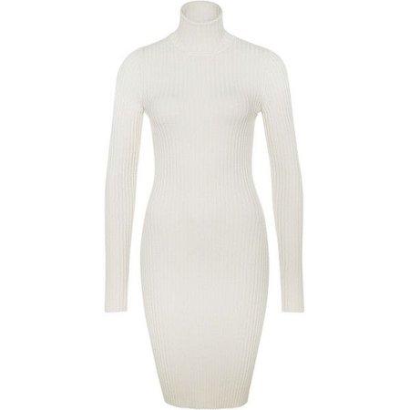 MERINO RIB DRESS TURTLENECK ($495)