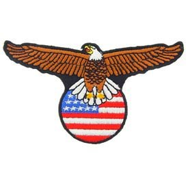 usa-stars-and-stripes-american-embroidered-iron-on-patch-flying-bald-eagle-bird-on-usa-flag-globe-applique_22447.jpg (275×275)