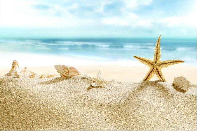 Sea Star Beach Sand Canvas Print Wall Decor - PrintGround