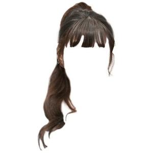 Brown Hair Ponytail Bangs PNG