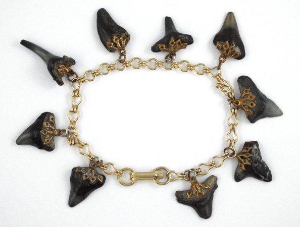 1960s Vintage Fossil Shark Teeth Charms Gold Tone Bracelet | Etsy
