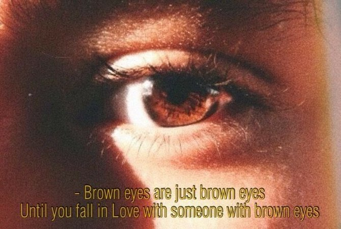 brown eye aesthetic - Google Search