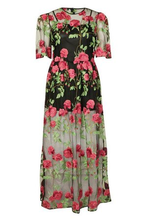 Plus Embroidered Floral Mesh Skater Dress | boohoo