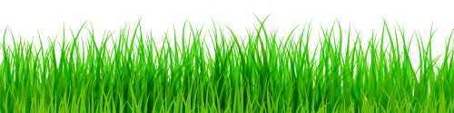 Green Grass PNG Clip Art - Best WEB Clipart